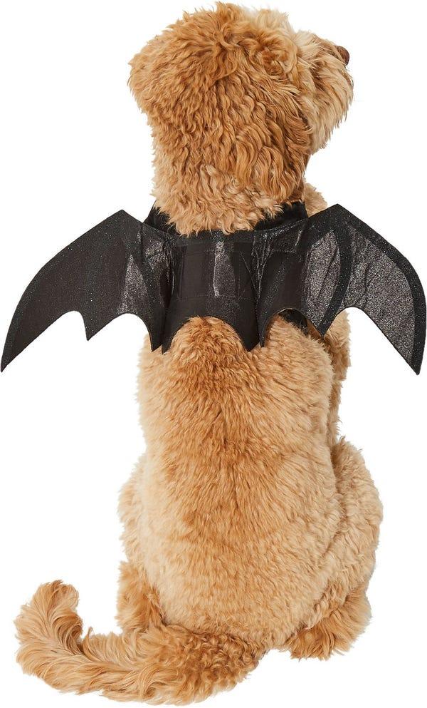 Bat Wings Costume