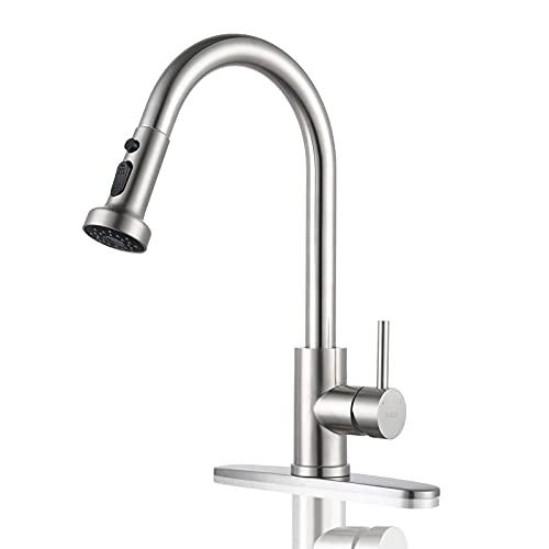 iVIGA Kitchen Sink Faucet, Utility Sink Faucet Single Handle