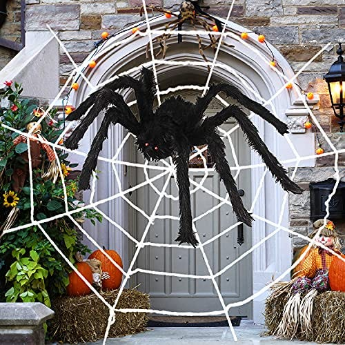 Giant Scary Spider