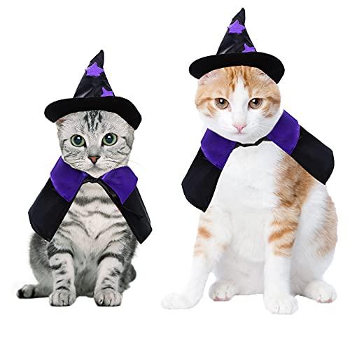 Cat Wizard Costume