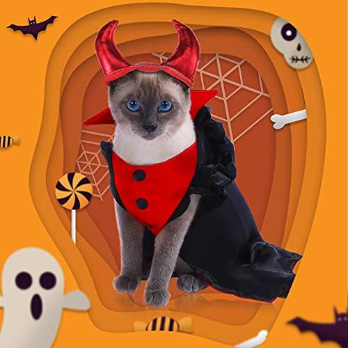 Cat Vampire Costume