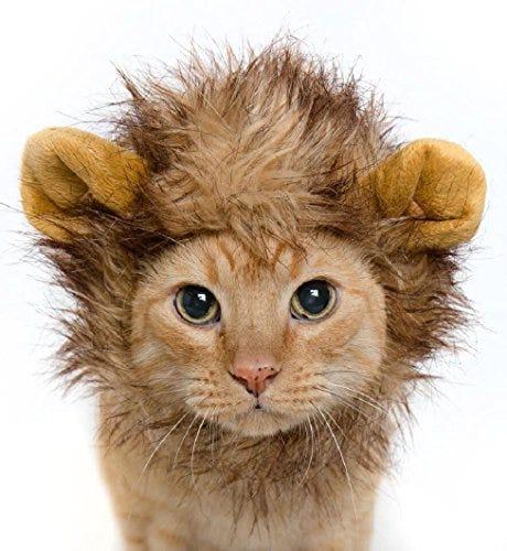Cat Lion Mane Halloween Costume