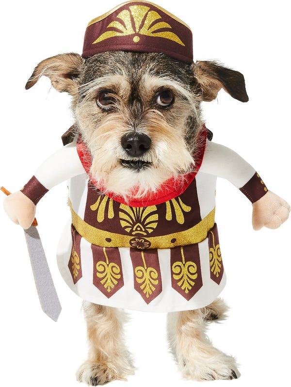 Front Walking Warrior Dog & Cat Costume