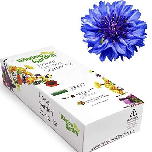 Window Garden - Marigold Flower Starter Kit
