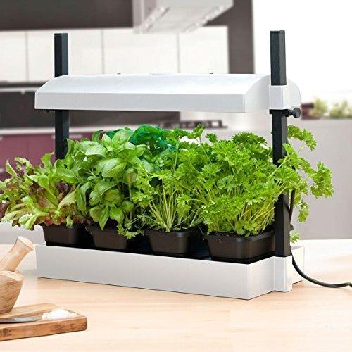 SunBlaster Micro Grow Light Garden