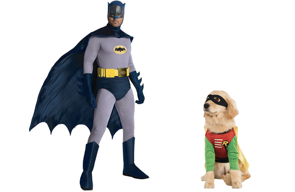 DC Comics Robin Pet Costume