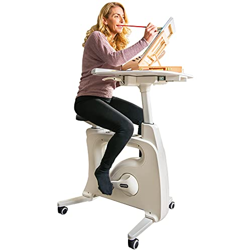 FLEXISPOT Home Workstation Desk Bike