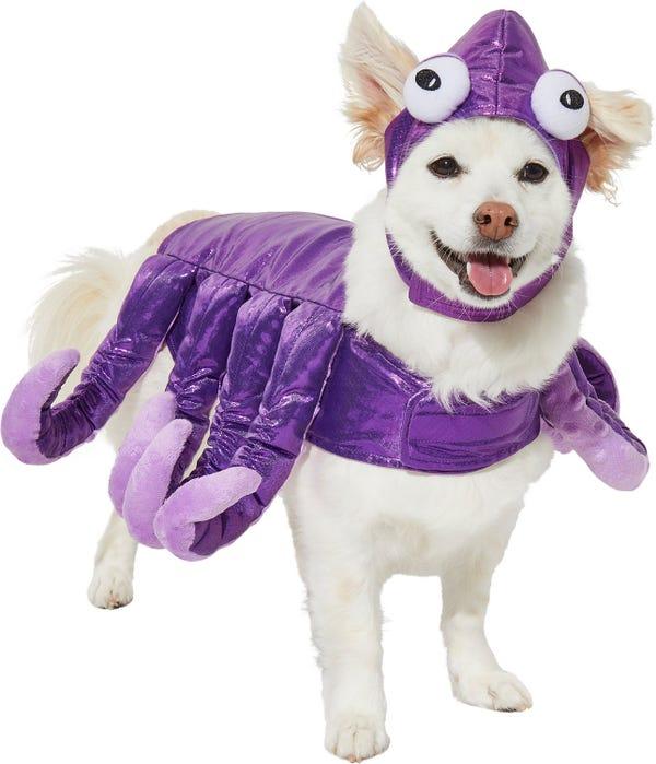 Frisco Octopus Dog & Cat Costume